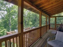 Screened in Porch Area