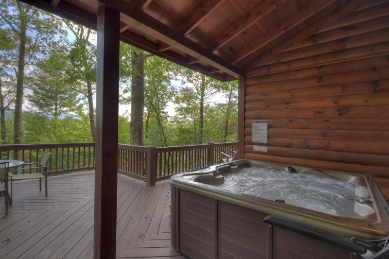 Bear paw in blue ridge north ga cabin rental for Bear ridge cabin rentals