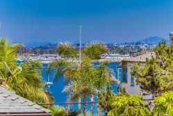Shared roof top deck with views of the Sea World firework show - South Mission Beach, San Diego Vacation Rental