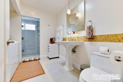 Downstairs bath with walk in shower