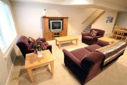 TV with DVD - Sitting Area w\/Queen Sofabed