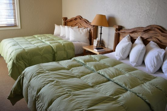 Two Comfy Queen Beds, Feather Pillows and Goose Down Comforters