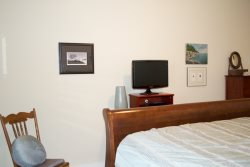 master queen on main floor with sleigh bed, full bath, shower, soaking tub, TV and DVD player