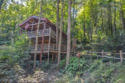 THE TREE HOUSE- UNIQUE TREE HOUSE LIKE 1 BEDROOM/ 1 BATH CABIN. GAS LOG FIREPLACE, PET FRIENDLY, OUTDOOR FIREPLACE, PRIVATE LOCATION, SLEEPS 2, STARTING AT $99 A NIGHT!