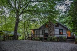BIT OF HEAVEN ON THE RIVER- VERY UNIQUE 3 BEDROOM CABIN ON THE TOCCOA RIVER WITH A ROPE BRIDGE TO PRIVATE TREE HOUSE! SLEEPS 8, PET FRIENDLY, WIFI, GAZEBO AND LARGE DOCK ON RIVER, STARTING AT $260/NIGHT!