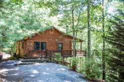 MOUNTAIN HEAVEN- 2BR/1BA- WOODED CABIN SLEEPS 4, PRIVATE ROMANTIC SETTING, KING BED IN THE MASTER, DESIGNER FURNISHINGS, WIFI, GAS LOG FIREPLACE, CHARCOAL GRILL, HOT TUB, ABUNDANCE OF WILDLIFE! STARTING AT $99 A NIGHT!