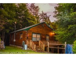 TUCKED AWAY- 2BR/1BA WOODED CABIN, CLOSE TO TOWN, WOOD BURNING FIREPLACE, WIFI, CABLE TV, PET FRIENDLY, STARTING AT $85/NIGHT!