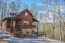 BEAR HAMMOCK- 4BR/3BA- LUXURY CABIN WITH A BEAUTIFUL MOUNTAIN VIEW, POOL TABLE/PING PONG, WET BAR, WOOD BURNING FIREPLACE, GAS & CHARCOAL GRILLS, HOT TUB, AND PET FRIENDLY! STARTING AT $175 A NIGHT!