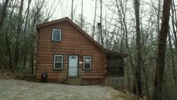 Loft 1 Bedroom Cabin Near Unicoi State Park - Great for Honeymooners!