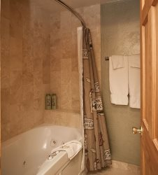 New Shower with Jacuzzi Tub