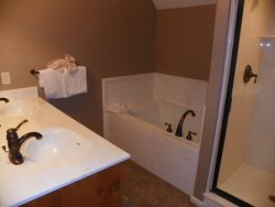 Master Bathroom Jetted Tub