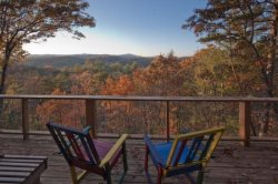 Pet Friendly Cabin in Blue Ridge GA