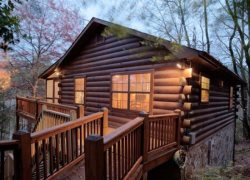Pet Friendly Blue Ridge Rental Cabin