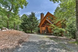 Ellijay Mountain Cabin Where Pets Are Welcome