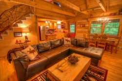 2BR Cabin, Sleeps 8, Creek and Fishing Lake with Rainbow Trout, Central to Attractions, Stone Wood-Burning Fireplace, Wii Game Console, Outdoor Fire Circle