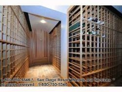 View of wine cellar
