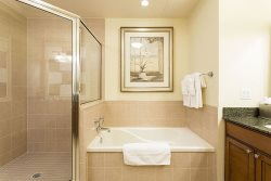 Master En suite with soaking tub and walk in shower
