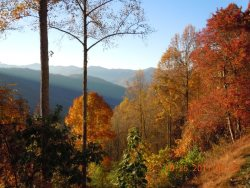 Fall Color from Eagles Ridge -- The Winning Photo of our 2011 Fall Photo Contest
