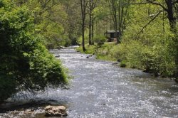 Paradise Valley Lodge - With Fishing Out the Back Door, This Creek Front Rental is Less than 15 minutes to Fontana Lake, Rafting, and Zip Line Canopy Tours