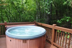 Relax in the Hot Tub Secluded by Trees
