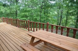 Cozy Cabin Has a Picnic Table on the Deck and a Horse Shoe Pit in the Yard for For Enjoying Mountain Air