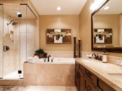 Deep Jetted Tub, Steam Shower and Dual Sinks in the Master Bath