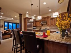 High-End Appliances in the Gourmet Kitchen