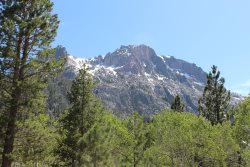 Surround yourself with the beautiful High Sierra Nevada Mountains, crystal clear alpine lakes and a wonderful vacation experience.