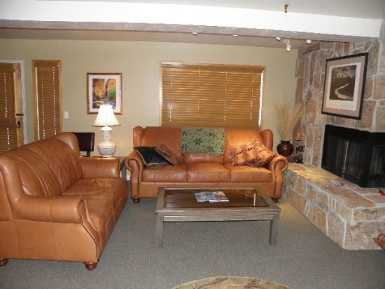 Living Room w\/ Gas Fireplace and Sleeper Sofa