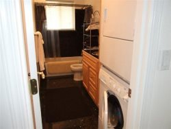 Colbys Run - 2nd Level - Bathroom 2 - Washer and Dryer