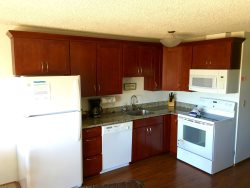 Newly Remodeled Kitchen with Microwave and Dishwasher
