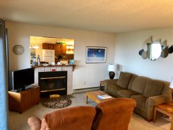 Living Room wiht Color TV and Fireplace