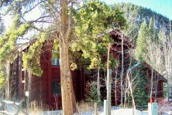 Mojave home nestled in the trees
