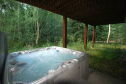 Private hot tub overlooking the forest in the backyard