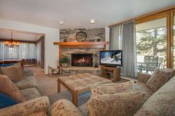Spacious living room featuring a stone fireplace and a comfortable queen sleeper sofa
