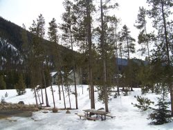 Views surrounding the Pines complex