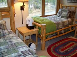 Twin beds with log accents