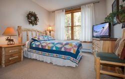 Mountain master bedroom with a queen bed