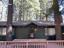 1915B-Cute cabin in the tall pines