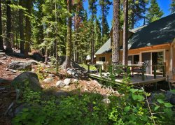 Great Tahoe cabin in the Pines, new back deck, hiking/biking trails close by