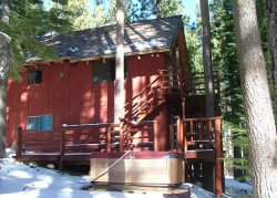 Great Cabin, Secluded in a quiet setting & completely surrounded by towering pine trees