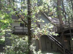 Shady Brook Cabin - A simply spectacular cabin with a pond view, surrounded by luscious trees and wildlife.