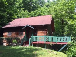 Enjoy the serenity of the mountains and hike to the Blue Ridge Parkway from the front door!!