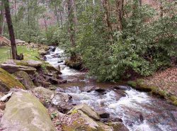The sounds of a rushing mountain stream will greet you as you begin your vacation at Bear Paw Falls.