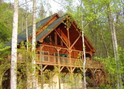 10% DISCOUNT FOR END OF AUGUST BOOKINGS!!! Glorious View Of The Great Smoky Mountains