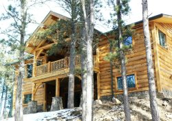 Magnificent New Log Home