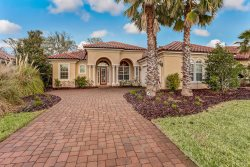 95269 Whistling Duck Circle