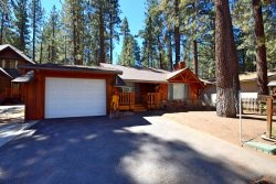 Gentle Bear, relish your time in this dog friendly Vacation Cabin in Big Bear near Snow Summit Ski Resort with a fenced yard.