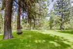 Lovely, well established and landscaped acreage in wooded setting.