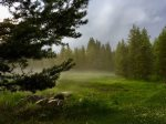 Mountain Meadow Retreat misty morning.